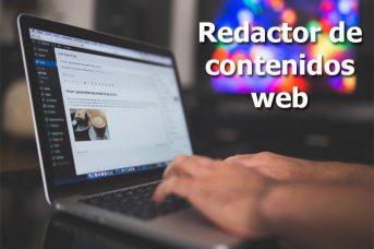 redactor de contenidos web